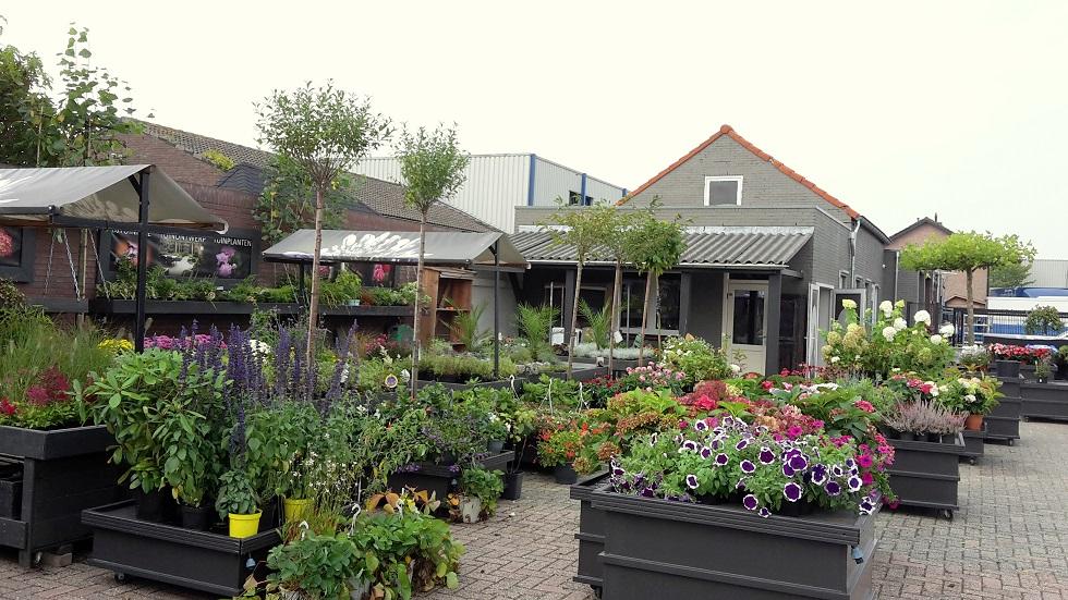 BJ Tuinadvies plantenwinkel